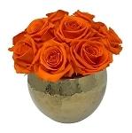 Heinau Bella Orange Flowers Roses