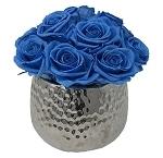 Heinau Nova Rosa Blue Roses