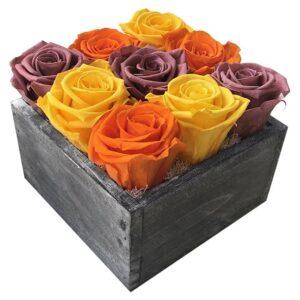 Heinau Roses In A Black Box (Black) Orange Flowers Roses