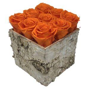 Heinau Fame Orange Flowers Roses