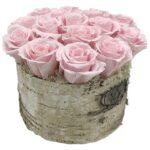 Asbury Light Pink Roses