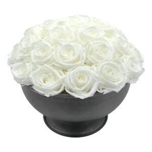 Heinau Joli White Roses
